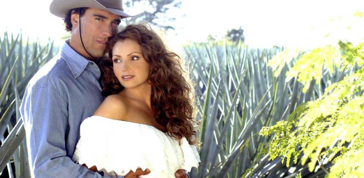 Destilando Amor es una novela que salió al aire en el año 2007